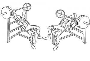 Press-chest-incline-press
