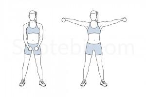 dumbbell-lateral-raise-exercise-illustration