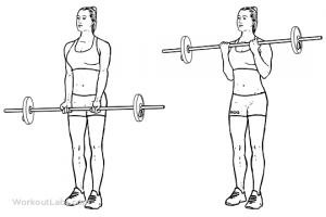 Barbell_Curl